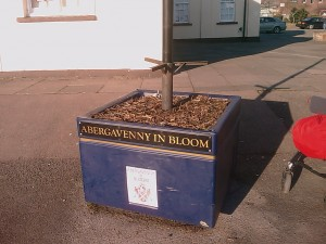 Abergavenny In Bloom ?!?
